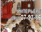 Фотография в   Продам меха лиса соболь белка колонок рысь в Абакане 0