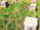 Скачать фото Земельные участки 10 соток под строительство дачи 59477627 в Красноярске