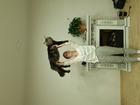 Смотреть фотографию Вязка кошек Ищем кошку для вязки, Мэйн кун, 68342047 в Красноярске