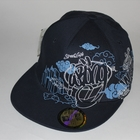 Кепка Wrung Division