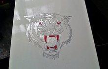 Корпус тигр, материнка, проц, привод