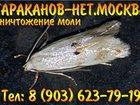 Изображение в   Быстро и недорого, уничтожим насекомых озоном. в Москве 5500