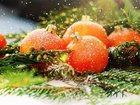 Уникальное фотографию  Новогодняя Абхазия! 34058030 в Казани