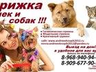 Увидеть изображение  стрижка животных выезд на дом,Стрижка кошек и собак, 34446821 в Ногинске