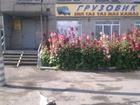 Смотреть foto Аренда нежилых помещений Нежилое помещение 34932447 в Кургане