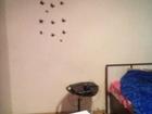 Скачать бесплатно изображение  Сдам двухкомнатную квартиру 37328869 в Кургане