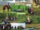 Свежее изображение  Конные прогулки Сочи, Экскурсии верхом на лошадях Сочи, Конный клуб Триумф Сочи 40058788 в Сочи