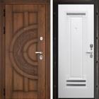 Двери со сменными панелями входные