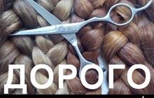 Куплю волосы в Перми и области