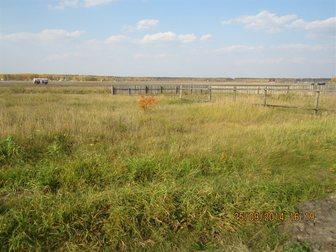 Просмотреть фотографию Земельные участки Продам уч-к в СНТ Земляничная поляна 32616200 в Кургане
