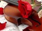 Увидеть фото  живая музыка скрипка 38392731 в Курске