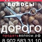 Покупаем волосы по высокой цене в Вашем городе