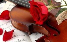 Живая музыка скрипка