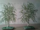Изображение в Хобби и увлечения Разное Ручная работа оригинальное дерево из бисера в Магнитогорске 990