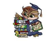 Дипломные, курсовые работы Выполняю работы по экономике, бухгалтерскому учету, а