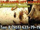 Фотография в Прочее,  разное Разное Дезинсекция. Быстро и недорого! Без запаха в Москве 5500