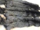 Скачать изображение Женская одежда Выделанные шкурки чернобурки в розницу и оптом 37106557 в Москве