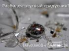 Скачать изображение Разные услуги Что делать если разбился ртутный градусник или энергосберегающая лампа? 39413036 в Москве