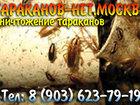 Скачать фотографию Разные услуги Озониование, Уничтожение, травля насекомых без запаха и химии, 39419120 в Москве