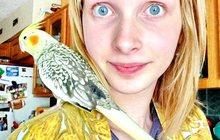 Семья примет в дар попугая, канареек, декоративных птиц