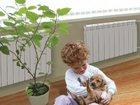 Свежее фотографию Строительство домов Автономное отопление 32782676 в Москве