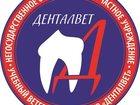 Просмотреть фотографию  Учебный ветеринарный центр Денталвет - всё должно быть как у людей 33304203 в Москве