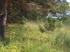 Фото в Недвижимость Земельные участки Предлагаю земельный участок площадью 10 гектаров в Москве 1000000