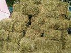 Изображение в   Сено свежее, подберем сено для крс и маленьких в Москве 50