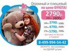 Смотреть изображение Детские игрушки Большие Плюшевые Мишки 34660913 в Москве