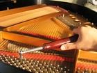Фотография в   Настройка, регулировка, ремонт фортепиано. в Москве 0