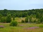Фотография в   Продам участок 12 сот. Вблизи лес, речка, в Санкт-Петербурге 660000