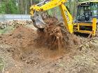 Фотография в Электрика Электрика (услуги) Удаление деревьев с земли. Удаление деревьев в Москве 1500