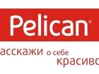 Скачать фото  Pelican - продажа детской, женская одежда Пеликан 36592068 в Москве