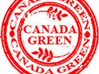 Увидеть фотографию  Газонные Травосмеси Канадского производства и очистки Канада Грин, /CanadaGreen/KanadaGreen/CanadaGrin/KanadaGrin/ 36609192 в Москве