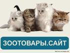 Смотреть фотографию Корм для животных Интернет магазин товаров для животных Зоотовары, сайт 37689183 в Красноярске