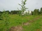 Скачать бесплатно фотографию  Предлагаю купить земельный участок 20га в Калужской области 37884244 в Мосальске