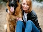 Смотреть изображение Вязка собак Кобель немецкой овчарки на вязку, 39003770 в Москве