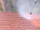 Свежее изображение Химчистка Удалить мох с крыши 39040754 в Москве