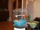 Свежее фото Птички и клетки Клетка для небольших птиц 39546417 в Москве