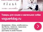 Смотреть фото Дома Продам готовый бизнес по зоотоварам, 39661032 в Москве
