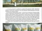 Свежее изображение  Зерно фуражное, комбикорма гранулированные 46699409 в Благовещенске