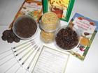 Маточное молочко и другие пчелопродукты со своей пасеки