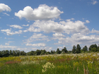 Новое foto Земельные участки Продажа: земля 42 соток, село Ознобишино 66462697 в Москве