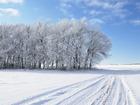 Увидеть фотографию Земельные участки Совхоз без посредников продает участок 6 га по самой низкой цене в регионе 68556874 в Москве