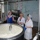 Действующий молочный завод, молзавод, молокозавод купить продается