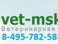Ритуальные услуги для животных Ритуальные услуги для животных