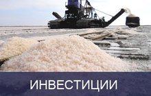 Инвестиции в IPO российского производителя соли