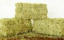 Продается сено от производителя