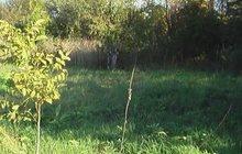 Земельный участок в СНТ Сокол-3 в г, Чаплыгин Липецкой области