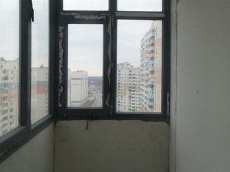 Продажа собак, щенков в Москве